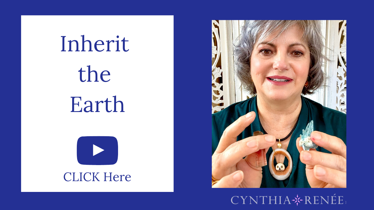 Video: Inherit the Earth